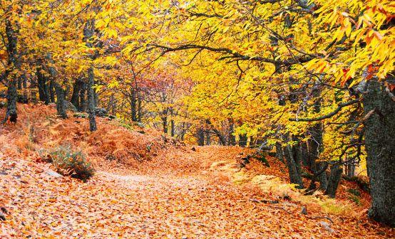 5_escapadas_de_otoño_